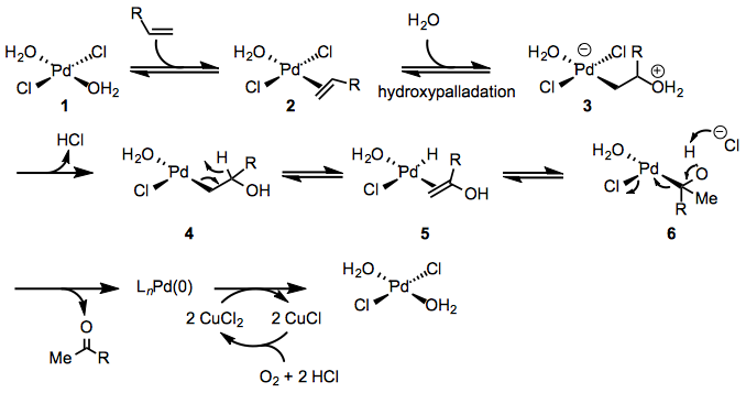 Wacker Oxidation Organic Reactions Wiki